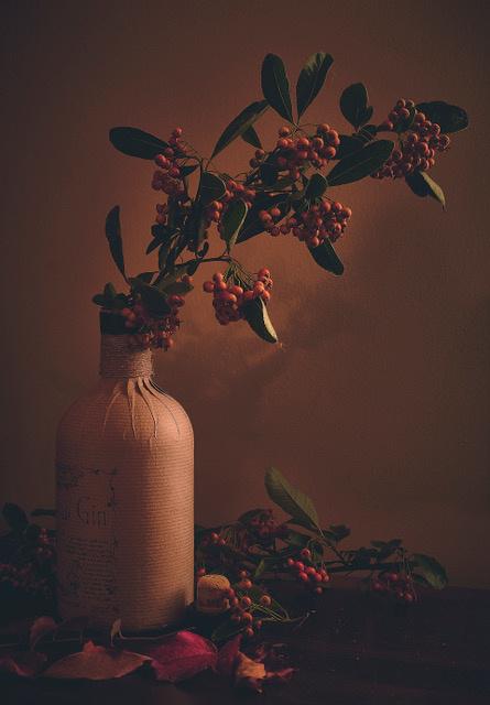 Umo Art Gallery Bottle Up Autumn.