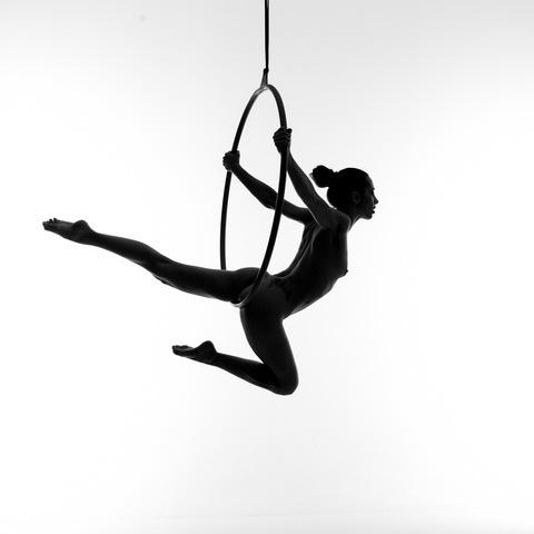 Umo Art Gallery Aerial hoop