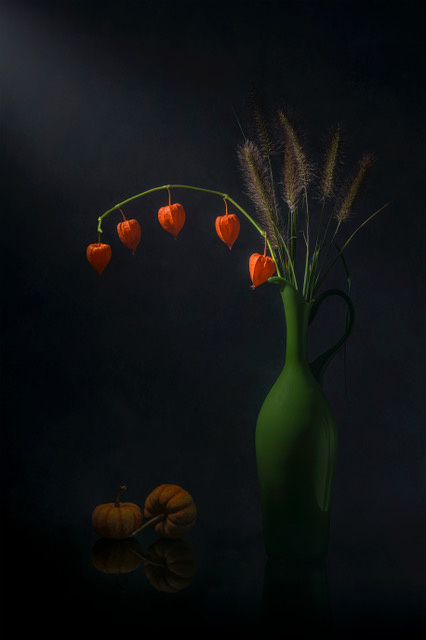 Umo Art Gallery Chinese Lantern and Tail Grass