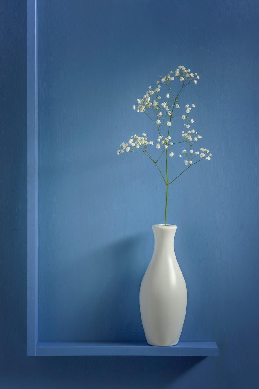 Umo Art Gallery Simplicity