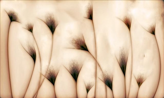 Umo Art Gallery vaginae terram