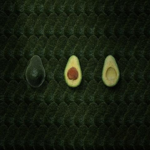 Umo Art Gallery avocado