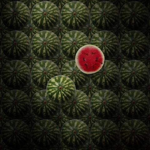 Umo Art Gallery watermelons