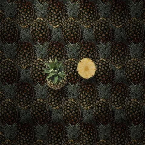 Umo Art Gallery pineapples
