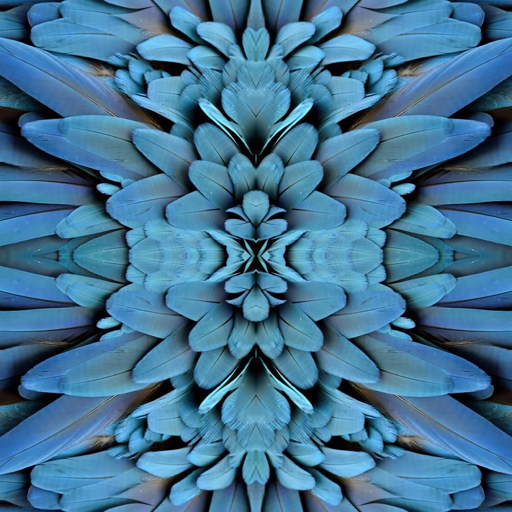 Umo Art Gallery UA-SS326006882
