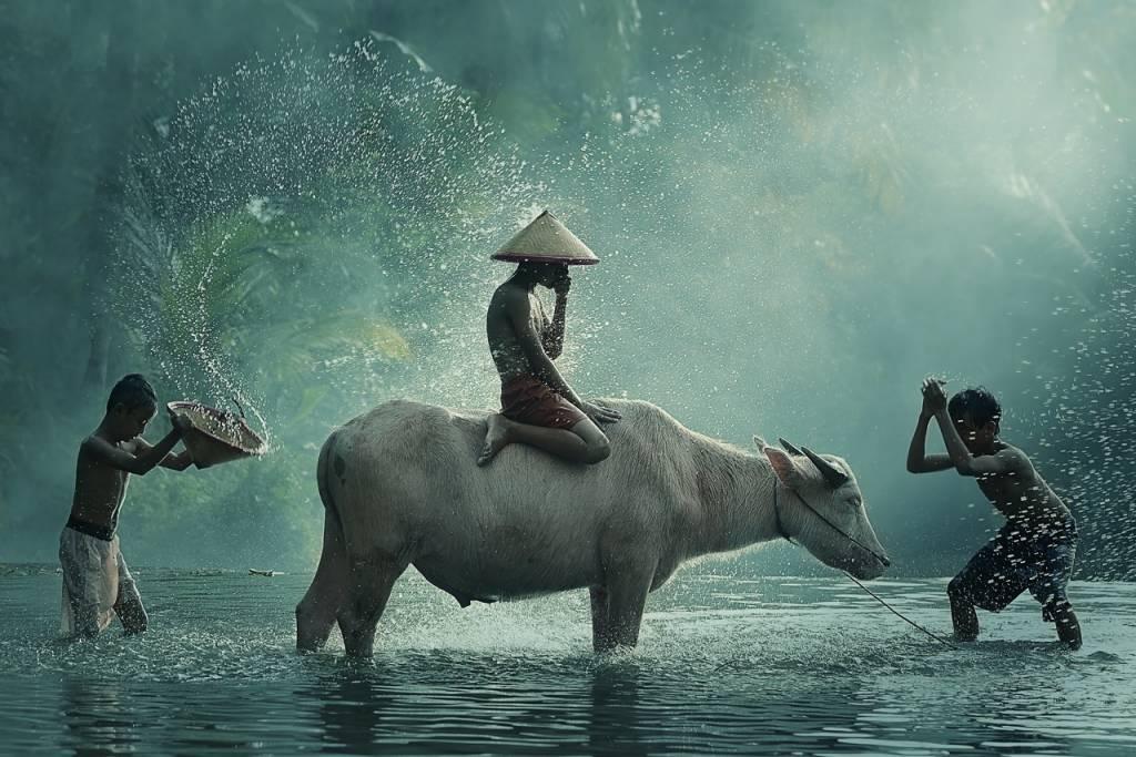 Umo Art Gallery Water Buffalo