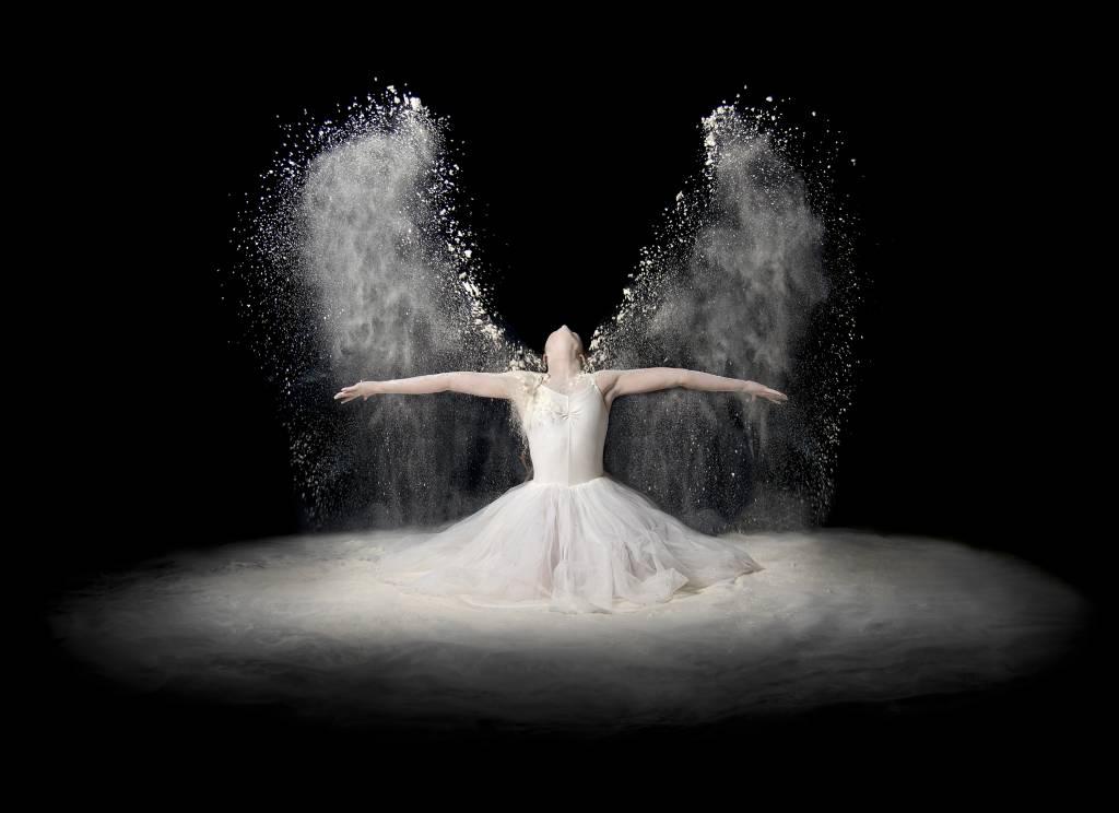 Umo Art Gallery Flour Wings