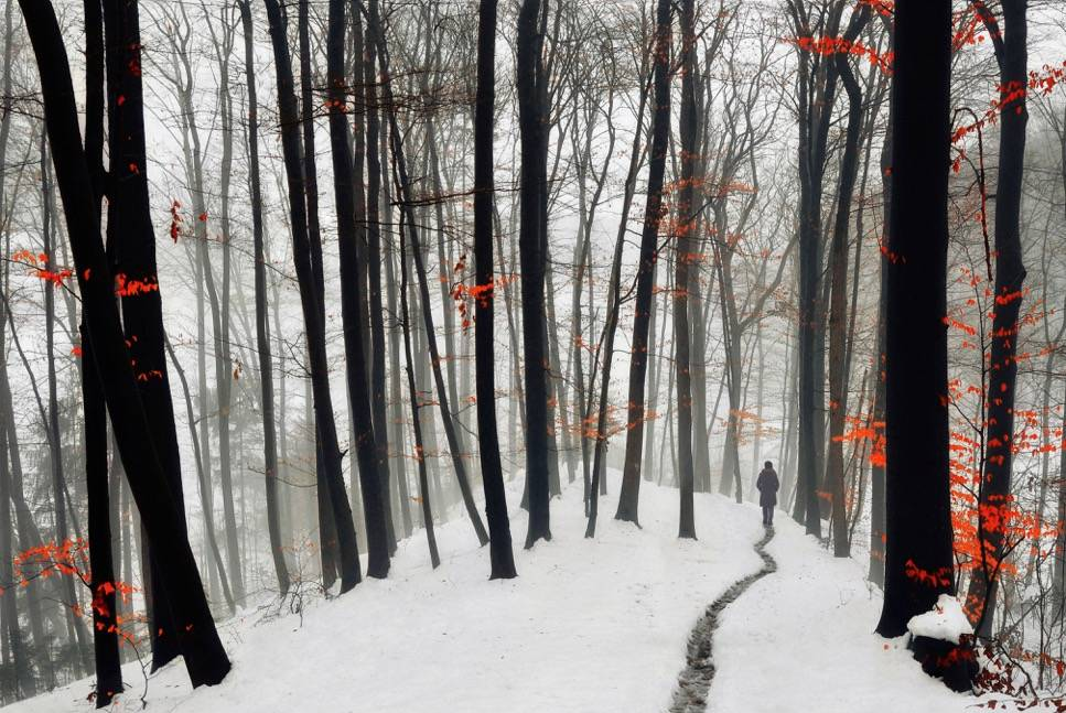 Umo Art Gallery Through autumn and winter