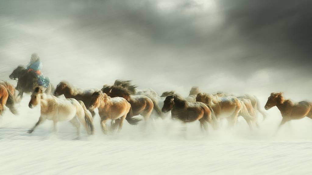 Umo Art Gallery Horses gallop
