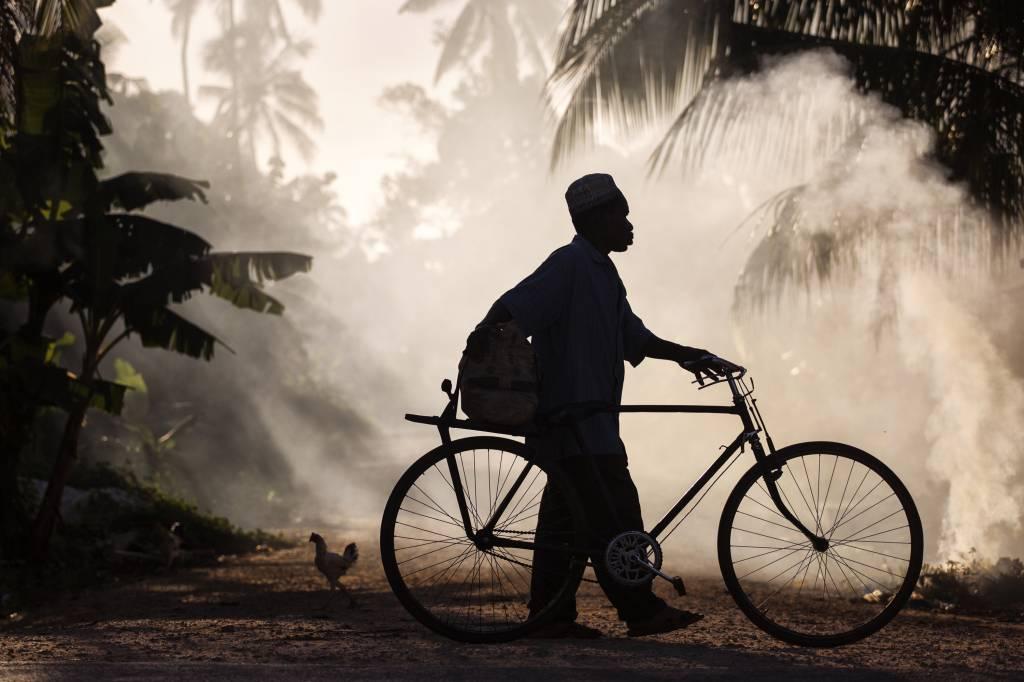 Umo Art Gallery Biker man