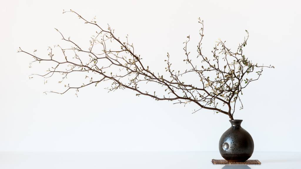 Umo Art Gallery Vase And Branch
