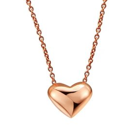 Ketting Stainless Steel met Hartje Gold Plated