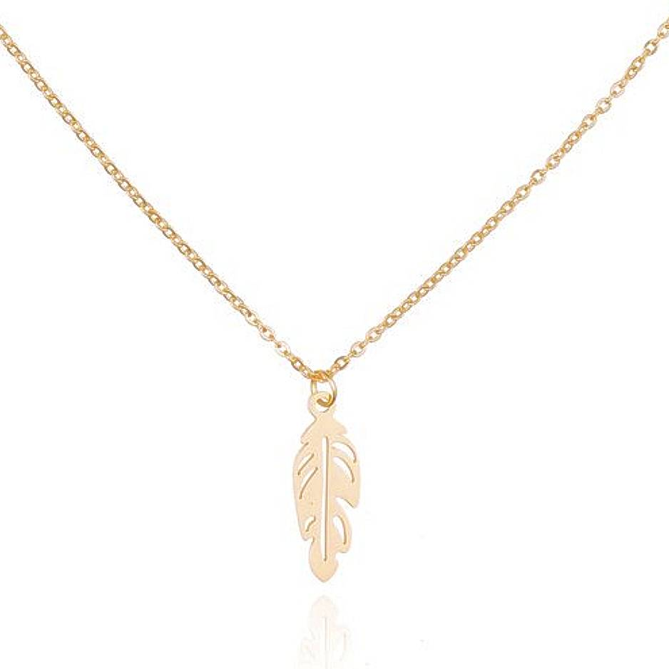 Ketting Stainless Steel Feather - Rose