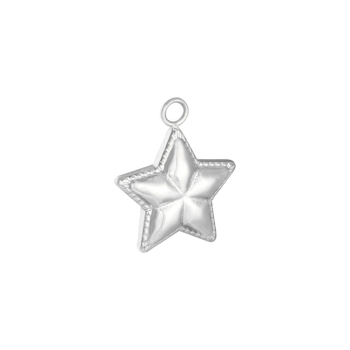 Stainless Steel Ster Charm voor aan je ketting oorbellen of armband