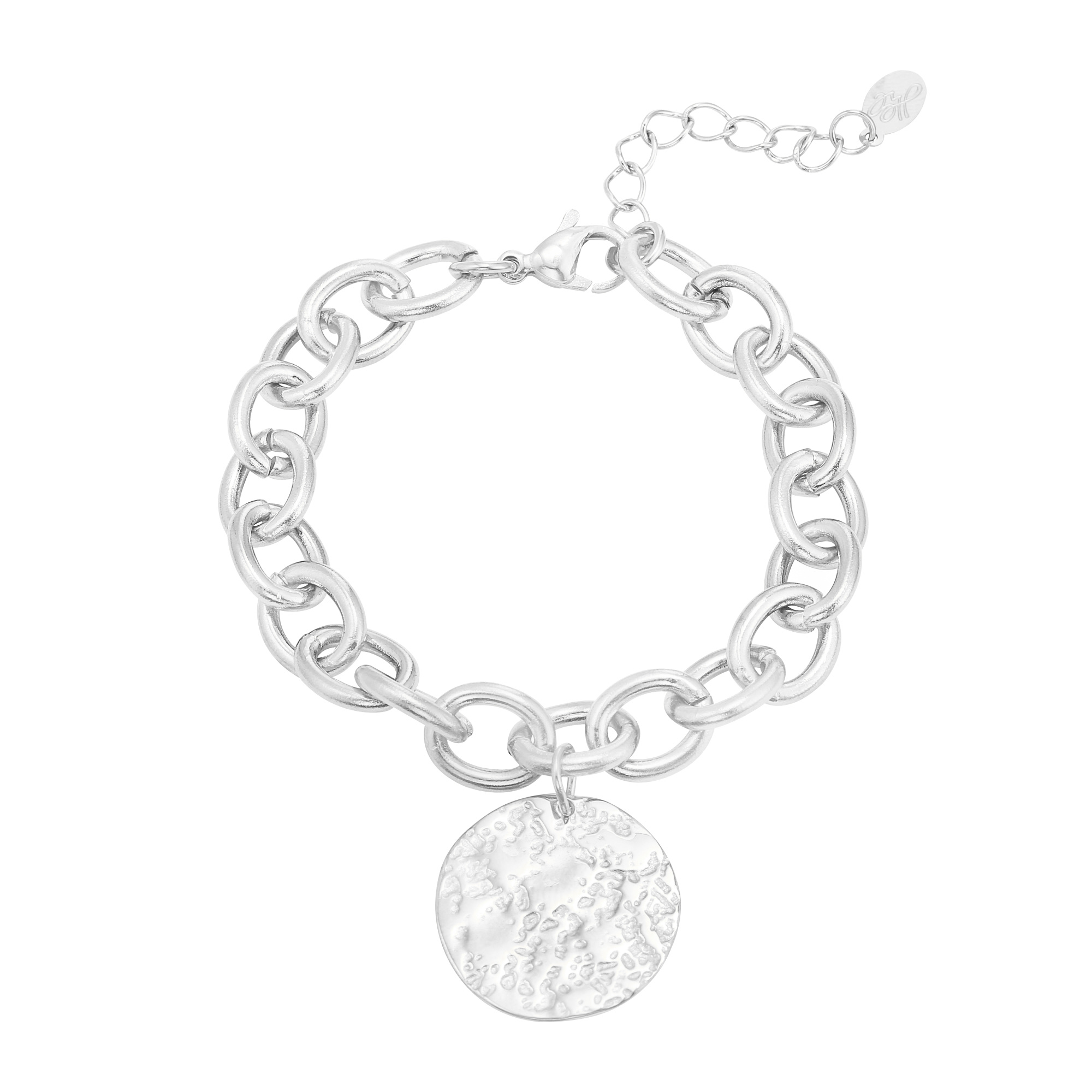 Schakel Armband Coin Stainless Steel Zilver