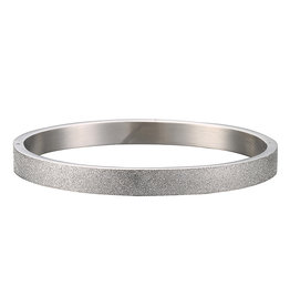 Armband - Bangle - Stainless Steel Silver Plated