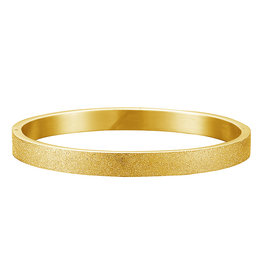 Armband - Bangle - Stainless Steel Gold Plated