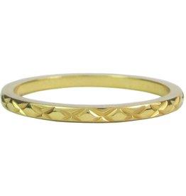 Charmin's CHARMINS GOLD STEEL R305