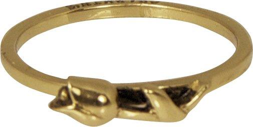 Charmin's DUTCH LOVER GOLD R207