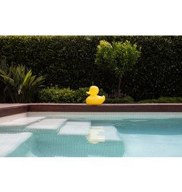 Goodnight Light® The DUCK DUCK Lamp S