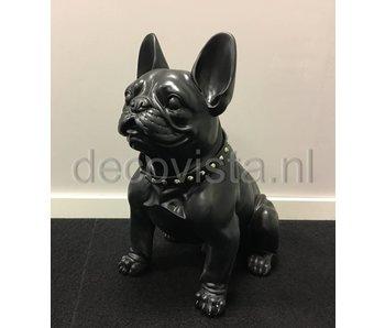 Bulldogge Hund, schwarz