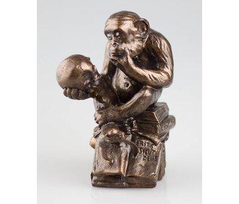 Mouseion Monkey with skull, Darwin monkey