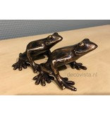 Two bronze tree frogs