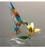 Kolibri  op bloem