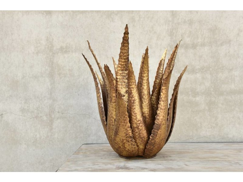 Rasteli Dekorative Agaven-Zierpflanze