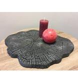 schwarzes Steinplateau im Baumstammlook, Baumscheibe