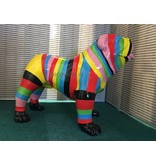 Tuinbeeld  Engelse Bulldog multi-color