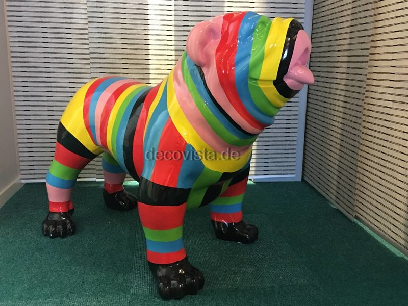 Bunte englische Bulldogge multi-color