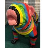 English Bulldog garden statue - multi-color