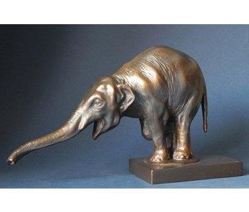 Bedelende aziatische olifant, Bugatti