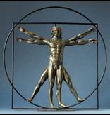 Mouseion statue of The Vitruvian Man