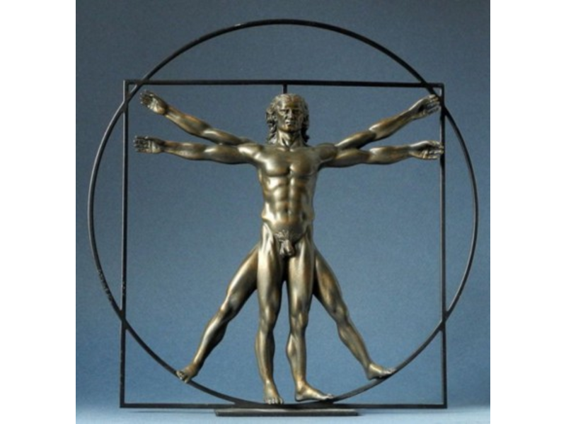 Mouseion Beeld van The Vitruvian man - Mens van Vitruvius