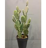 Casablanca Deco-Art Cactus plástico en maceta