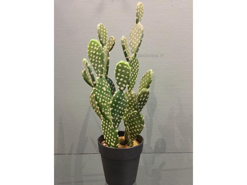 Casablanca Deco-Art Cactus in bloempot