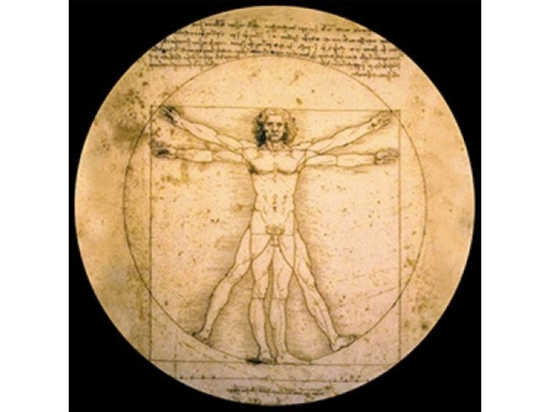 Mouseion Da Vinci Briefbeschwerer Der Mann von Vitruvius