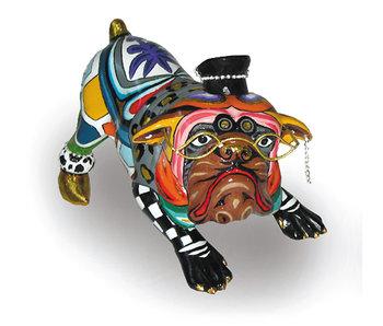 Toms Drag Hund Ewald, bulldogge