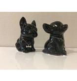 Chihuahua y bulldog francés -  caja de dinero