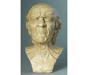 Mouseion Messerschmidt - The Vexed Man - miniature
