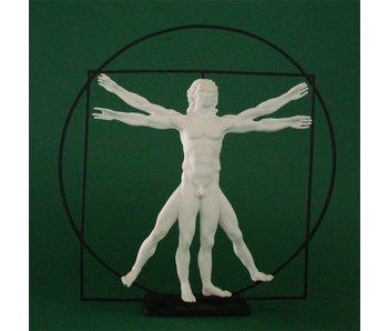 Mouseion De man van Vitruvius - wit