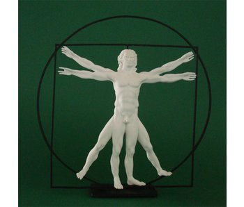 Mouseion The Vitruvian Man  - white