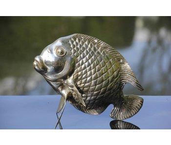 SEA LIFE - MGM Tropischer Fisch Tebal - versilberte Bronze aus Gelbguss
