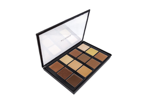 Crown Brush Conceal and Contour Palette