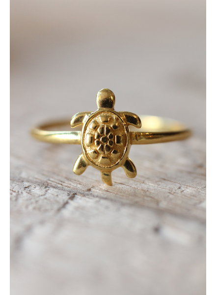 Muja Juma Ring Turtle