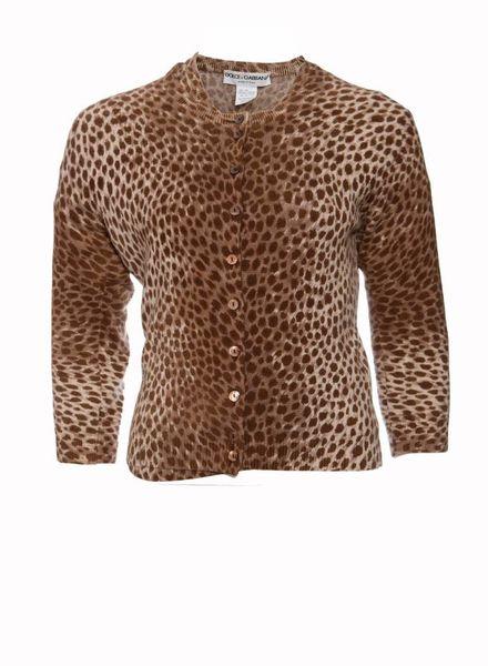 Dolce & Gabbana Dolce & Gabbana, Twin-set (top+vest) in cashmere luipaard print in maat S.