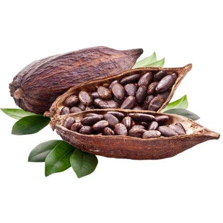 HolyFlavours Bio Kakaobohnen Rohkost 100g