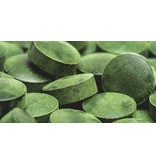 HolyFlavours Chlorella Tabletten Bio